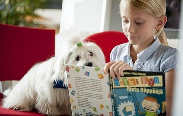 Chú chó chăm chú lắng nghe trẻ đọc sách